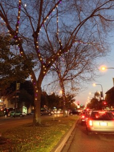 thumbnail for Shattuck Ave in Berkeley, all lit up