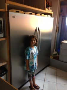 The largest fridge I have ever seen