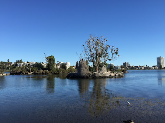 thumbnail for Three Reasons to Visit Lake Merritt